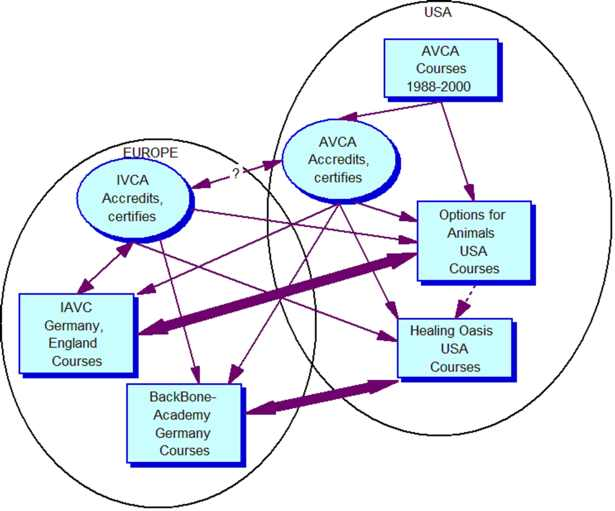 Fig. 1. Organisation and association scheme of the appraised animal chiropractic enterprises.